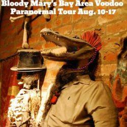 bloodymarytour